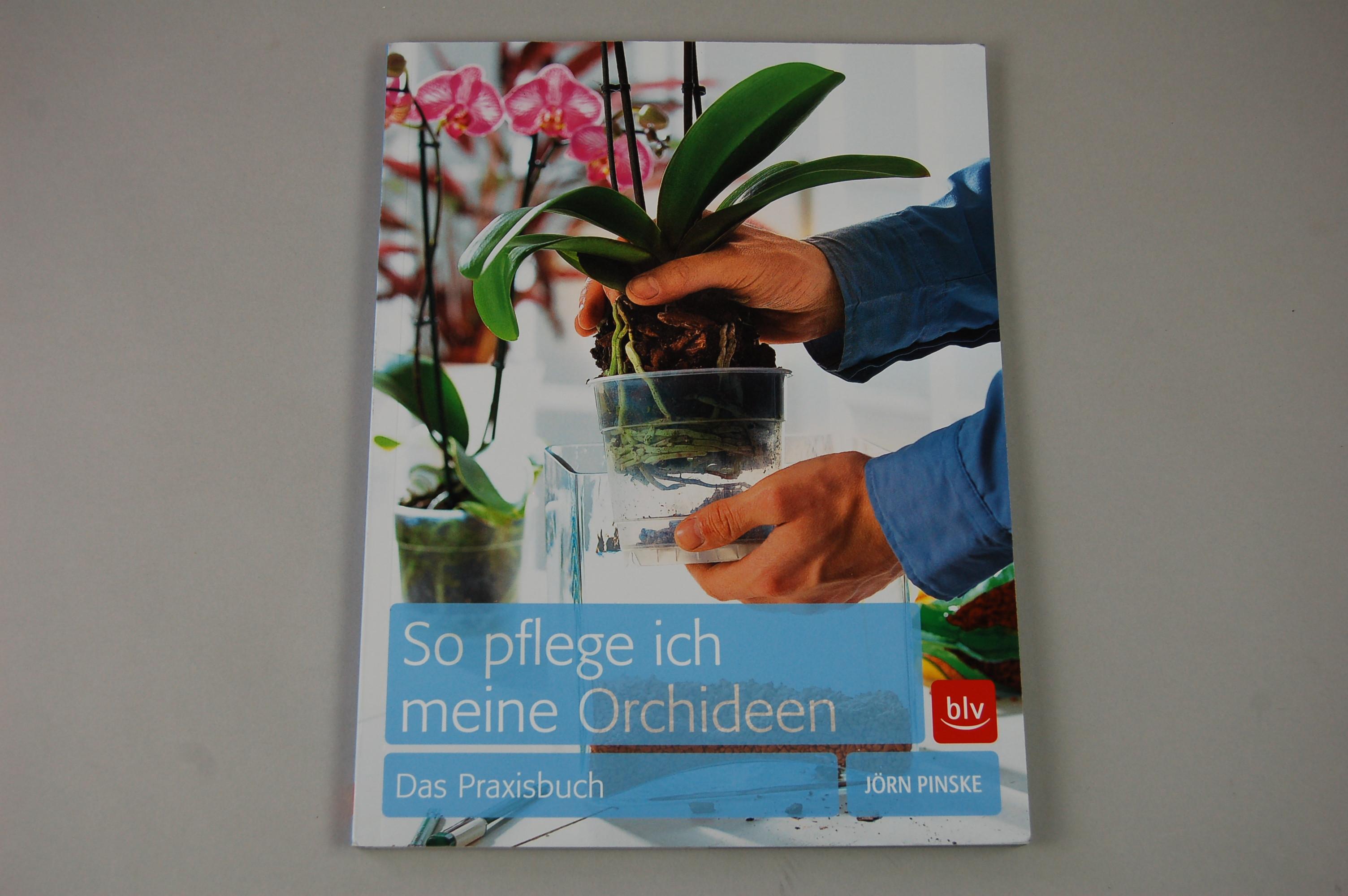 so pflege ich meine orchideen das praxisbuch. Black Bedroom Furniture Sets. Home Design Ideas