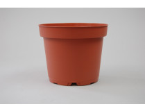 Kunststoff-Kulturtopf (12 cm)