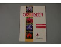Orchideen-Wissenswertes, Artenvielfalt, Pflege