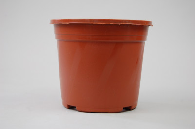 Kunststoff-Kulturtopf (13 cm)