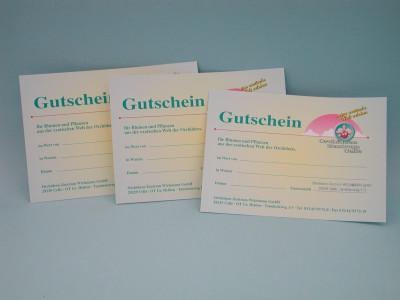 Gutschein Euro 100,00 (Orchideen-Wichmann.de)