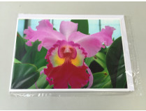 "Grußkarte ""Cattleya-Blüte"" (Klappkarte inkl. Umschlag)"