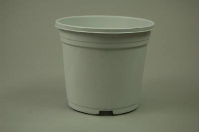 Kunststoff-Kulturtopf (11 cm)