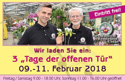 Tag der offenen Tür Orchideen Wichmann