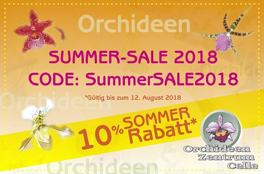 Orchideen Summer Sale
