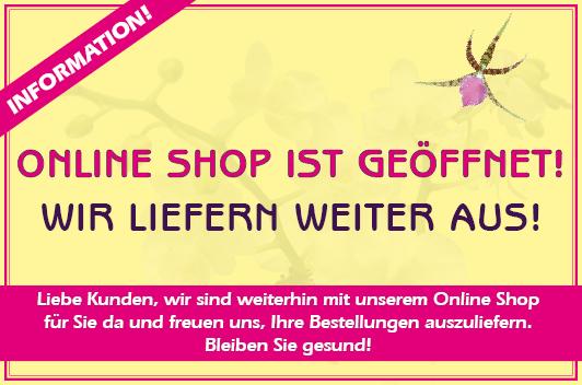 Online Shop offen