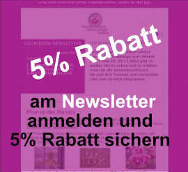 Newsletter 5% Rabatt Orchideen